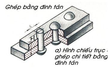 ban-ve-dinh-tan6